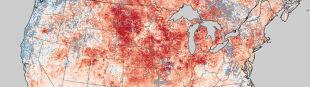 Fala ciepła w USA nie ustępuje. Rekordowe temperatury na wschodzie i w centrum