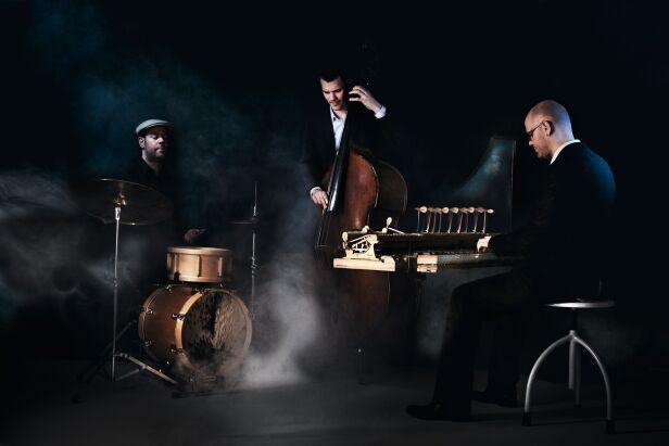VEIN Trio mat. prasowe