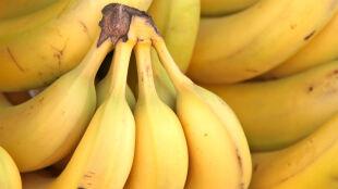 Banany są znakomitym źródłem energii dla biegaczy