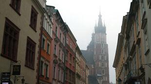 Krakowscy lekarze udowodnili istnienie alergii na smog