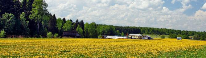Prognoza pogody na dziś: aura przyjemna. Wyjątkiem północny zachód Polski